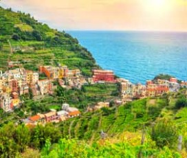 Day Tour: Wine and Hiking Tour through the Cinque Terre