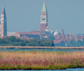 Itinerary 1 Venetian Bragozzo Sailboat: Northern Lagoon