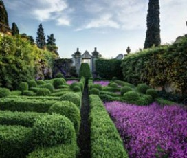 The Private Gardens of Florence