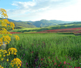 Nature Weekend in Sicily: Hiking the Sosio River Valley