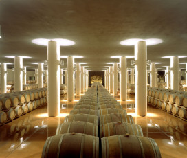 A Look At The Wine Cellar -  Castello di Fonterutoli - Mazzei