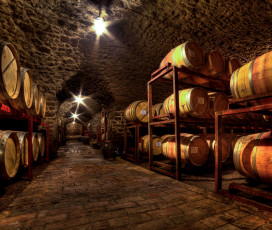 A Look At The Wine Cellar - Argiano