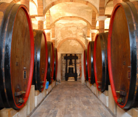 A Look At The Wine Cellar - Felsina